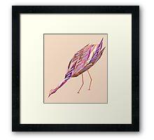 Waterbird 4 Framed Print