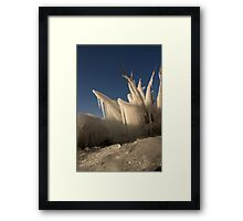 Frozen Blue Framed Print