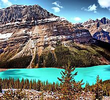 Peyto Lake by Vickie Emms