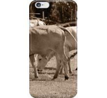 Bulls in a Pasture iPhone Case/Skin