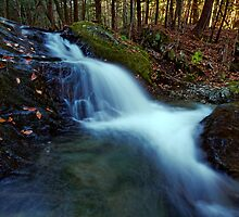 Small Falls Along Sherman Hollow Brook by Stephen Beattie