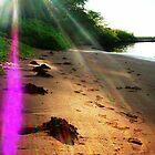 Cosmic Sunrays by Kamalanirose