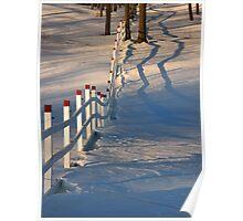 Fences V Poster