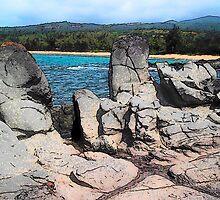 Lava Rock Face by Kamalanirose