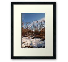 SoCal Snow Framed Print