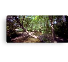 Rooted! Canvas Print