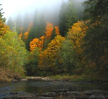 Alsea River, Missouri Bend by OregonCurly