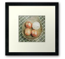 Still life of red plum tomatoes and garlic Framed Print