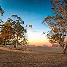 On The Farm - Nairne, South Australia by Mark Richards