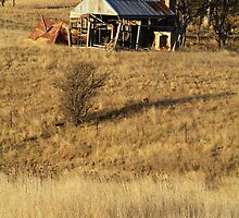 Ramshackled shed by Bryan Cossart