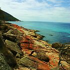 Wine Glass Bay, Tasmania by Luisa Muscara