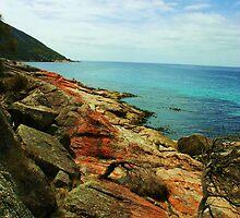 Wine Glass Bay, Tasmania by LuLuMu