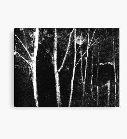 Alone night film grain #1 Canvas Print