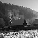 Winter Serenity by Bogdan Mujescu