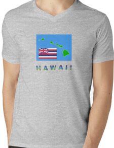 HAWAII STATE FLAG Mens V-Neck T-Shirt