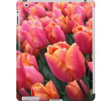 Dutch Pink Tulips Field Spring Flowers Holland iPad Case/Skin