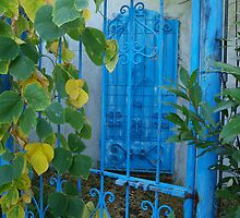 Secret Garden in Blue by Allison Peters