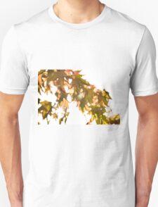 Acer Leaves 1 T-Shirt