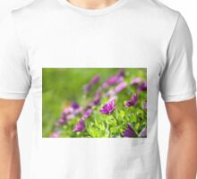 Purple Osteospermum Unisex T-Shirt
