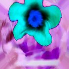 Flower by night by Sean Corcoran by mutantspace