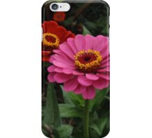 Cleveland MetroParks Zoo 12 iPhone Case/Skin