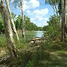 The Banks of the 'Yellow River' NORTHERN TERRITORY by Karen Stackpole