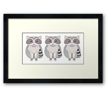 Raccoon Triplets Framed Print