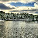 Winter Lake by terrebo