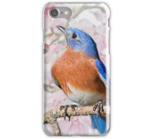 Bluebird in Spring iPhone Case/Skin