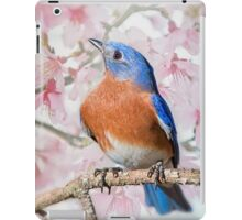 Bluebird in Spring iPad Case/Skin
