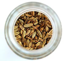 Closeup Aromatic Exotic Striped Indian Cuisine Fennel Seeds Jar by HotHibiscus