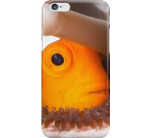 Nemo with eggs iPhone Case/Skin