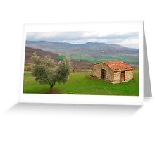 Olive Tree and Old Hut in Tuscany  Greeting Card