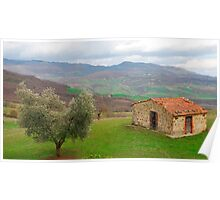 Olive Tree and Old Hut in Tuscany  Poster
