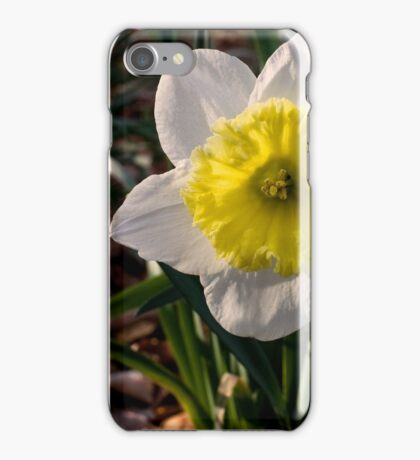 All Dressed in White iPhone Case/Skin