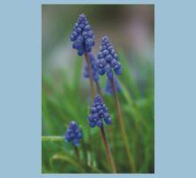 Grape Hyacinth (Muscari) One Piece - Short Sleeve