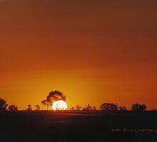 Big Western Sun © Vicki Ferrari by Vicki Ferrari