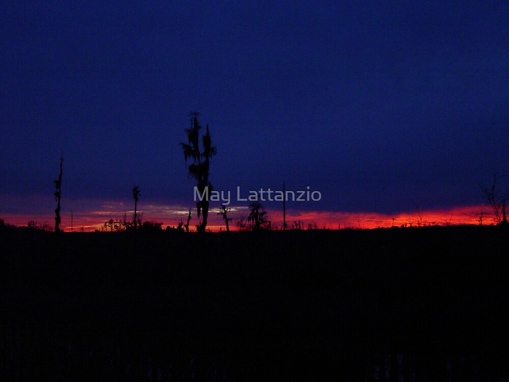 Sunset with a Stripe by May Lattanzio