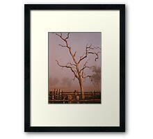 Misty Dawn In the Yards at Oakdale Queensland © Vicki Ferrari Photography Framed Print