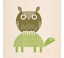 owl and turtle Photographic Print