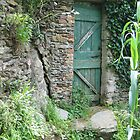 Green Door in Italy by Stephanie  Wiese