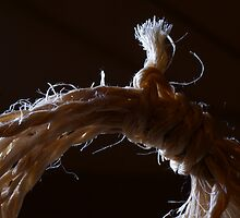 A frayed knot by Ted Widen