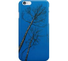 After Wildfire iPhone Case/Skin