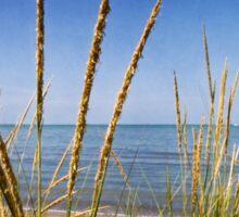 Sheldon Marsh Coastal Plants Sticker