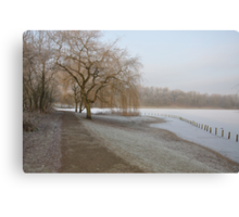 Weeping Willow Over Frozen Lake Canvas Print