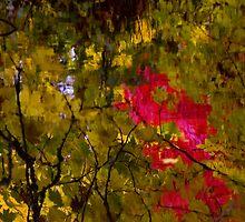 Reflections of Oregon by olivia destandau
