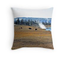 """Buffalo and Hot Springs"" Throw Pillow"