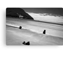 Sealer's Cove Canvas Print
