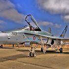 Canadian F-18A by Paul J. Owen
