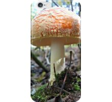 Fat Cap Mushroom iPhone Case/Skin